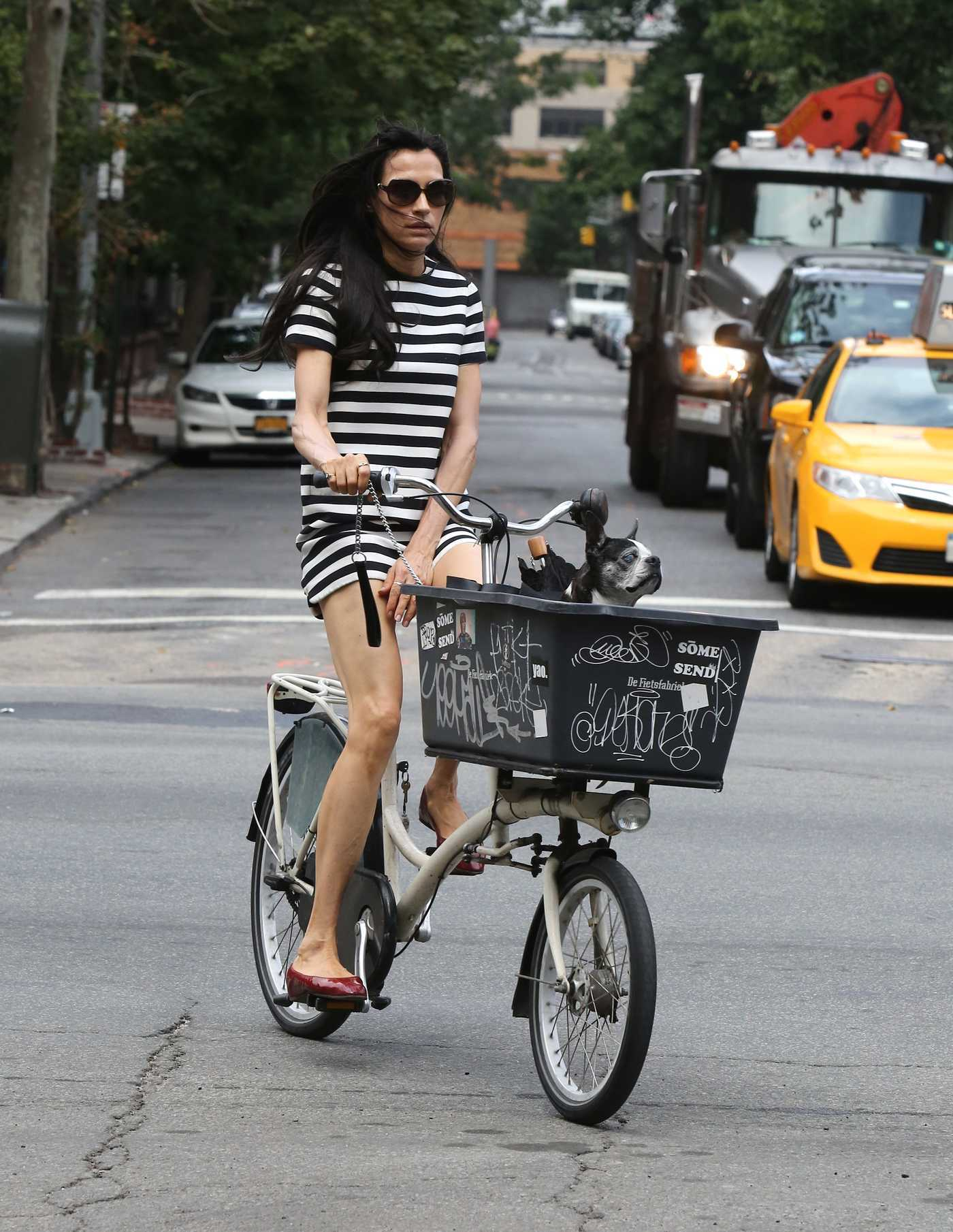 Famke Janssen Makes Cycling With Her Dog in New York City 07/03/2016