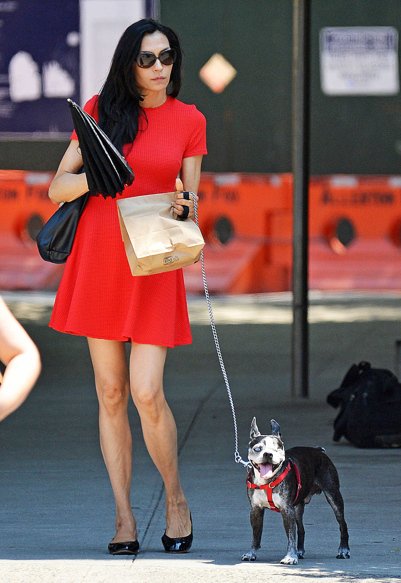 Famke Janssen Walking Her Dog in New York City 07/25/2016