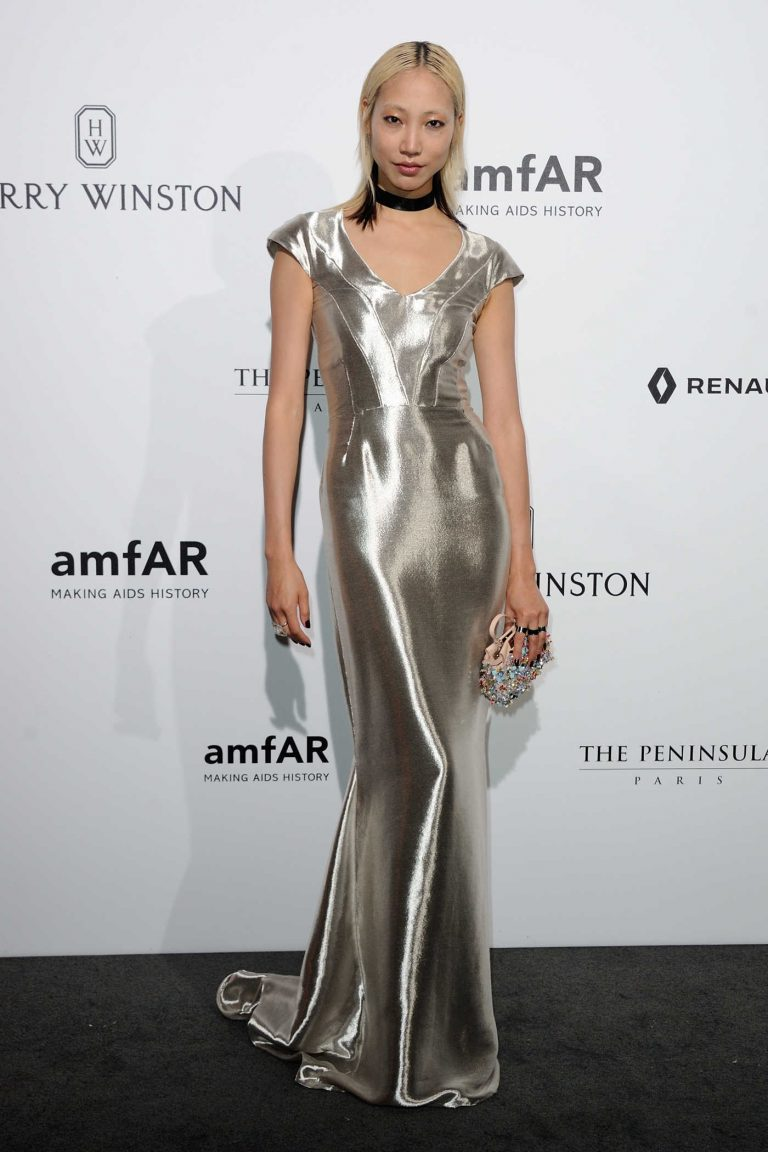 Soo Joo Park at Amfar Dinner During Paris Fashion Week 07/03/2016-1