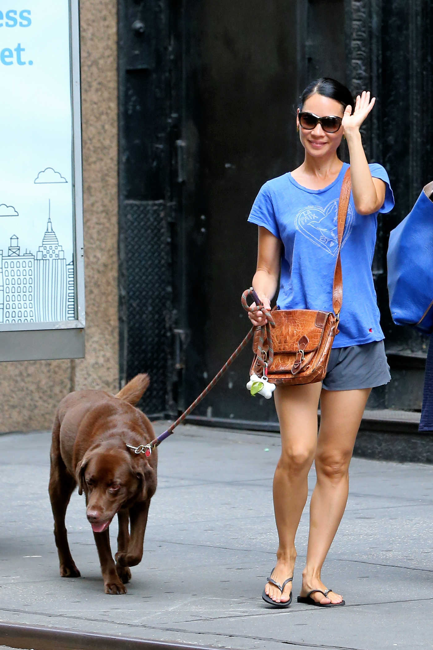 Lucy Liu Walks Her Chocolate Labrador in New York City 08/14/2016