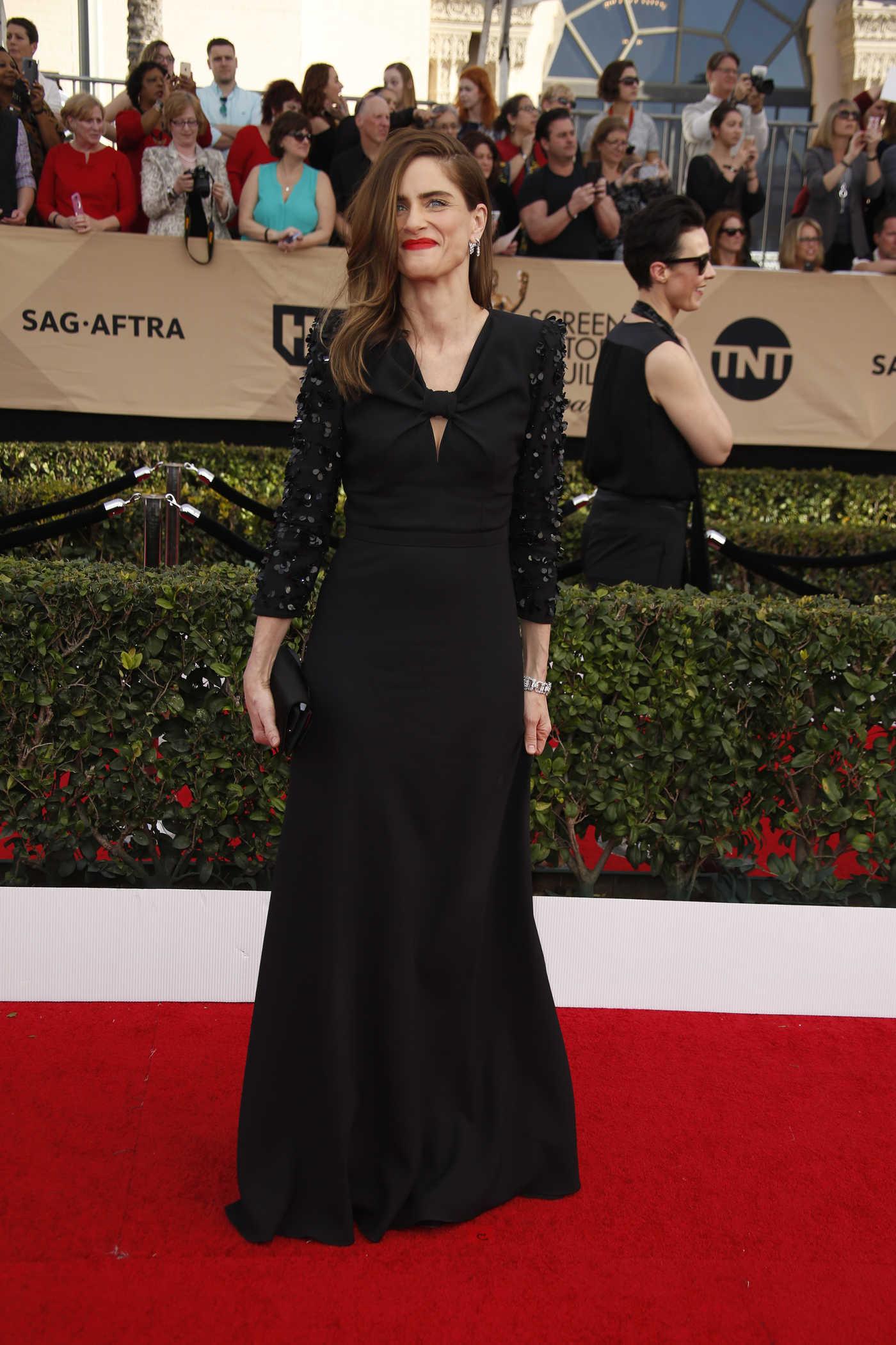Amanda Peet at the 23rd Annual Screen Actors Guild Awards in Los Angeles 01/29/2017