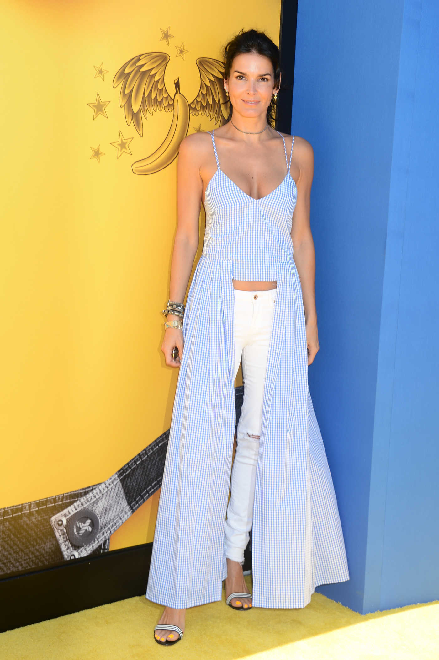 Angie Harmon at the Despicable Me 3 Premiere in Los Angeles 06/24/2017