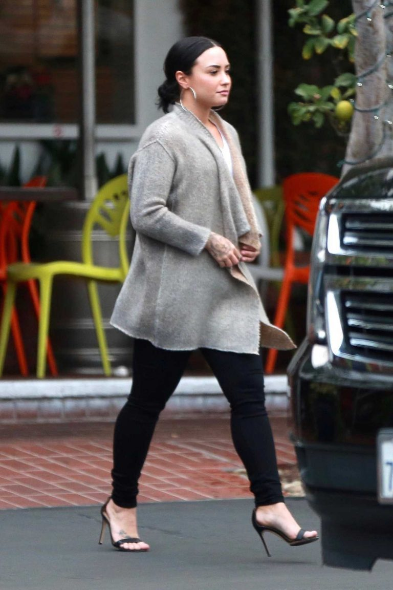 Demi Lovato Leaves Fred Segal After Christmas Shopping in West Hollywood 12/20/2017-1
