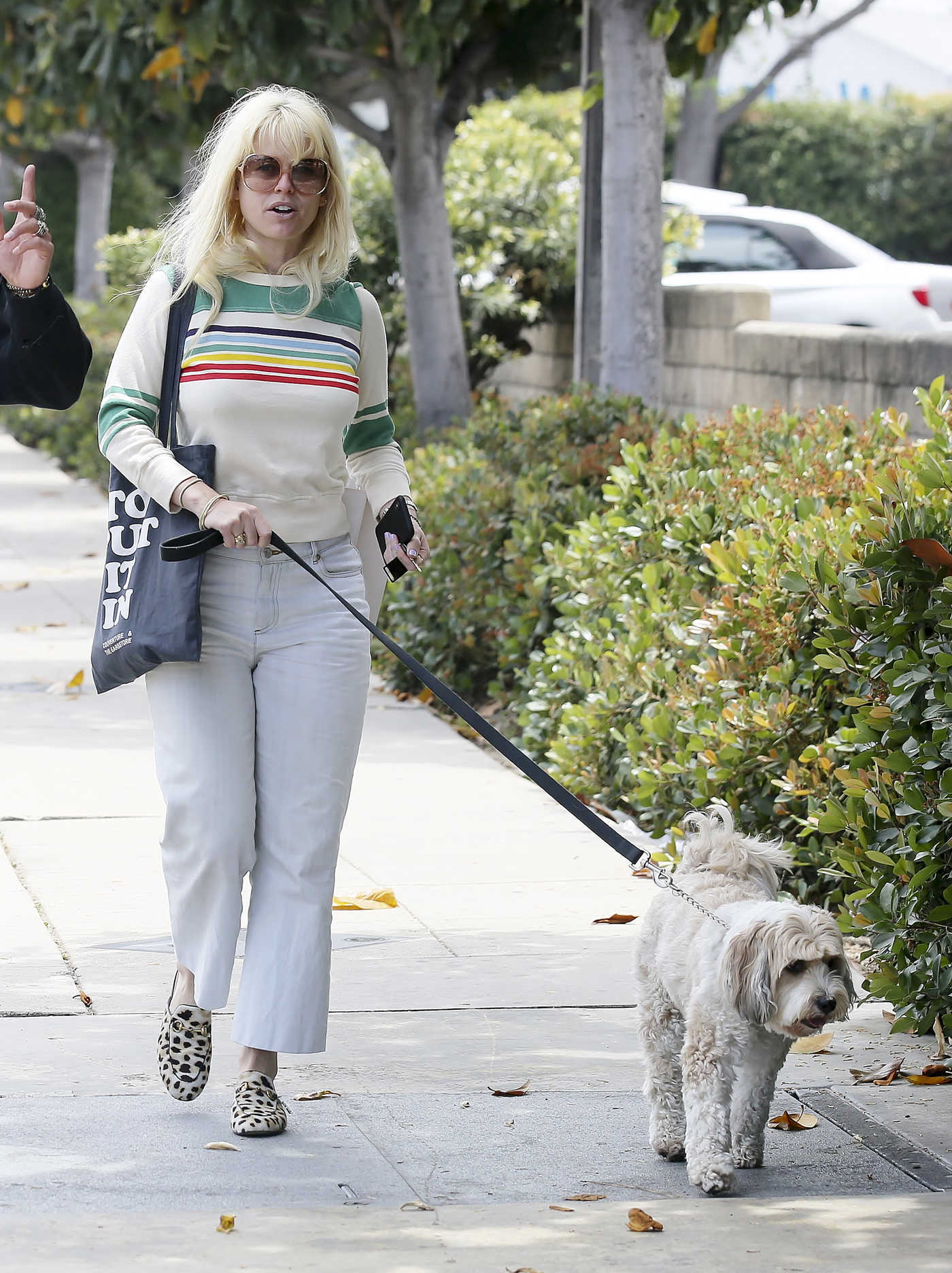 Alice Eve Walks Her Dog Out in Los Angeles 05/29/2018