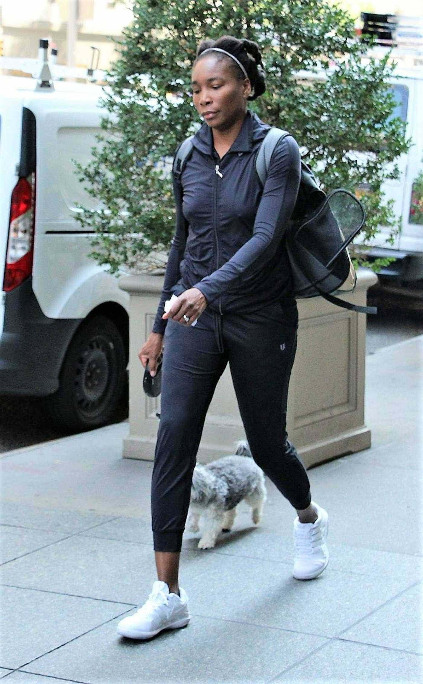 Venus Williams Walks Her Dog Out in New York City 08/24/2018