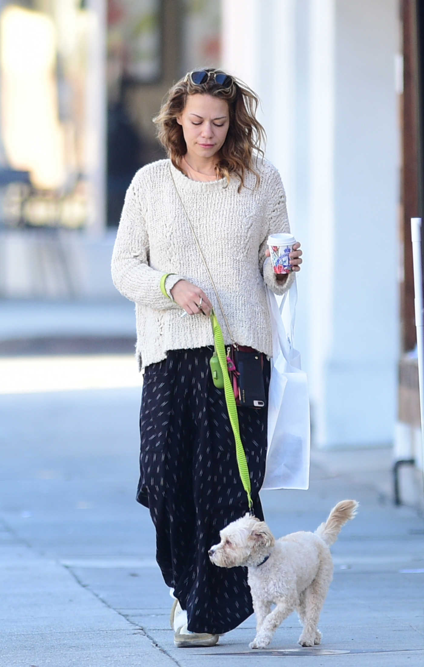 Bethany Joy Lenz in a Beige Sweater Walks Her Dog Out in Los Angeles 11/24/2018