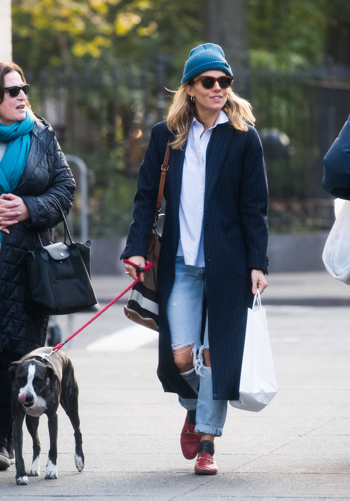 Sienna Miller in a Blue Ripped Jeans Walks Her Dogs in New York 11/19/2018