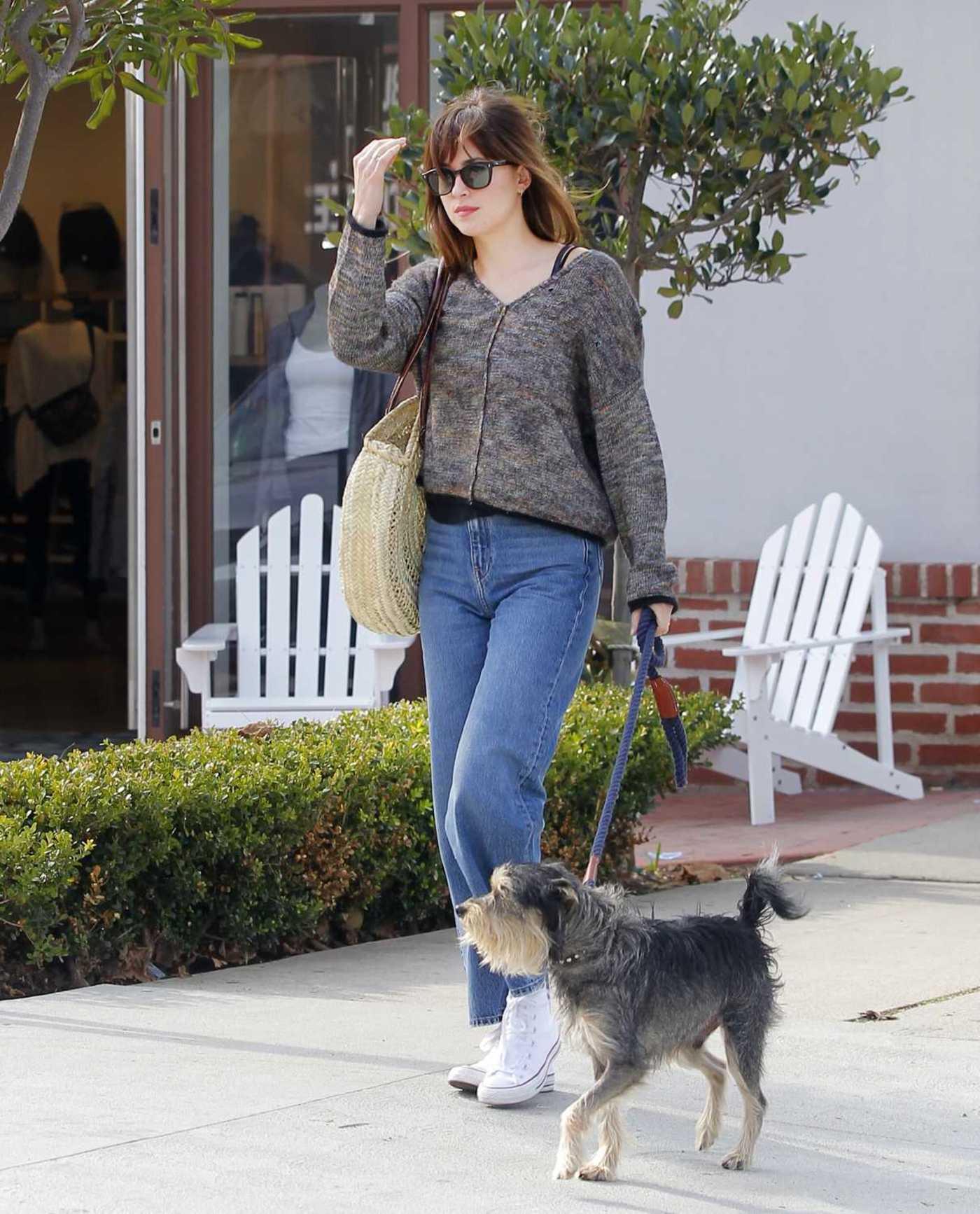 Dakota Johnson Walks Her Dog Out in Beverly Hills 12/13/2018