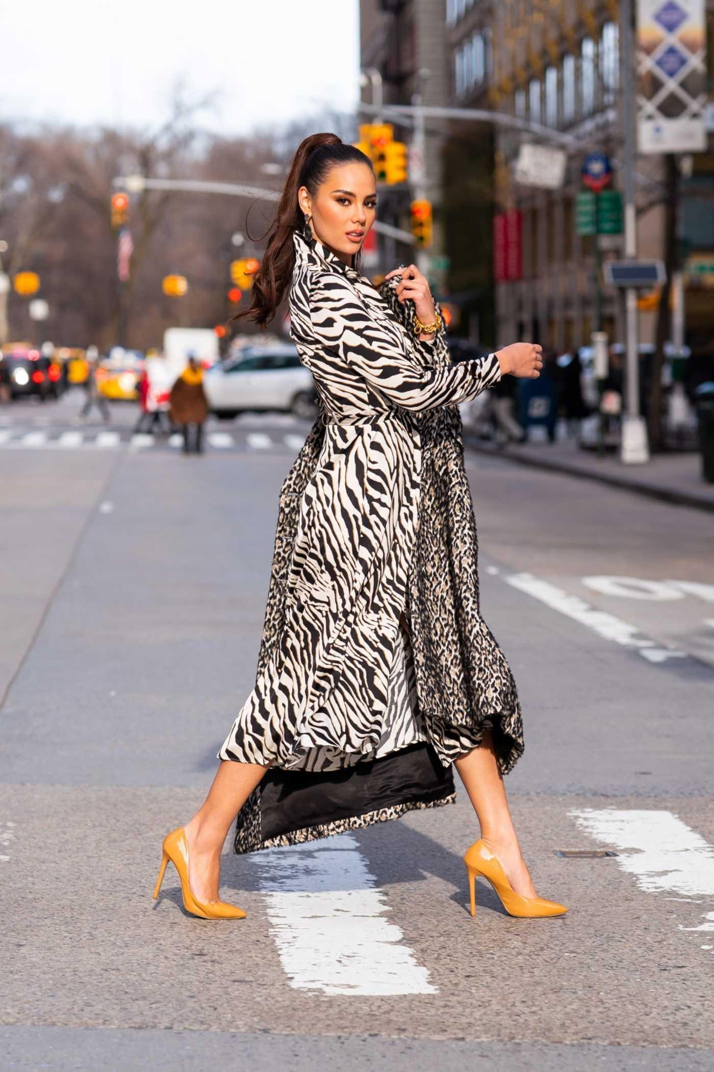 Catriona Gray in a Leopard Print Fur Coat Was Seen in Midtown in New York City 01/07/2019