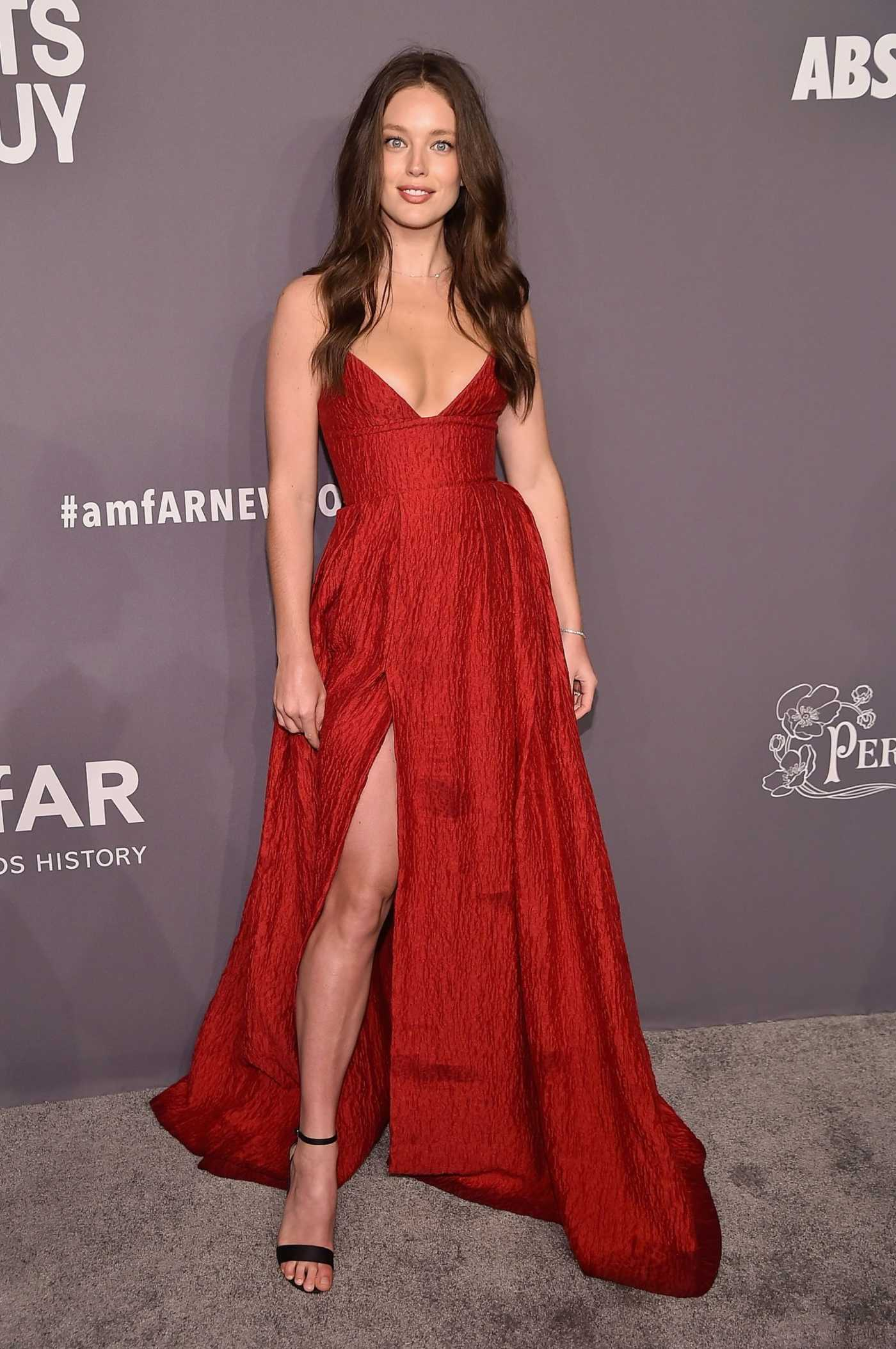 Emily DiDonato Attends 2019 amfAR New York Gala at Cipriani Wall Street in New York City 02/06/2019