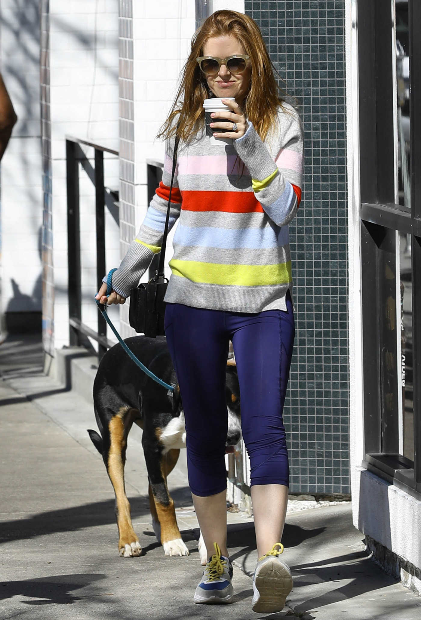 Isla Fisher Takes Her Dogs Out for a Walk in LA 02/22/2019
