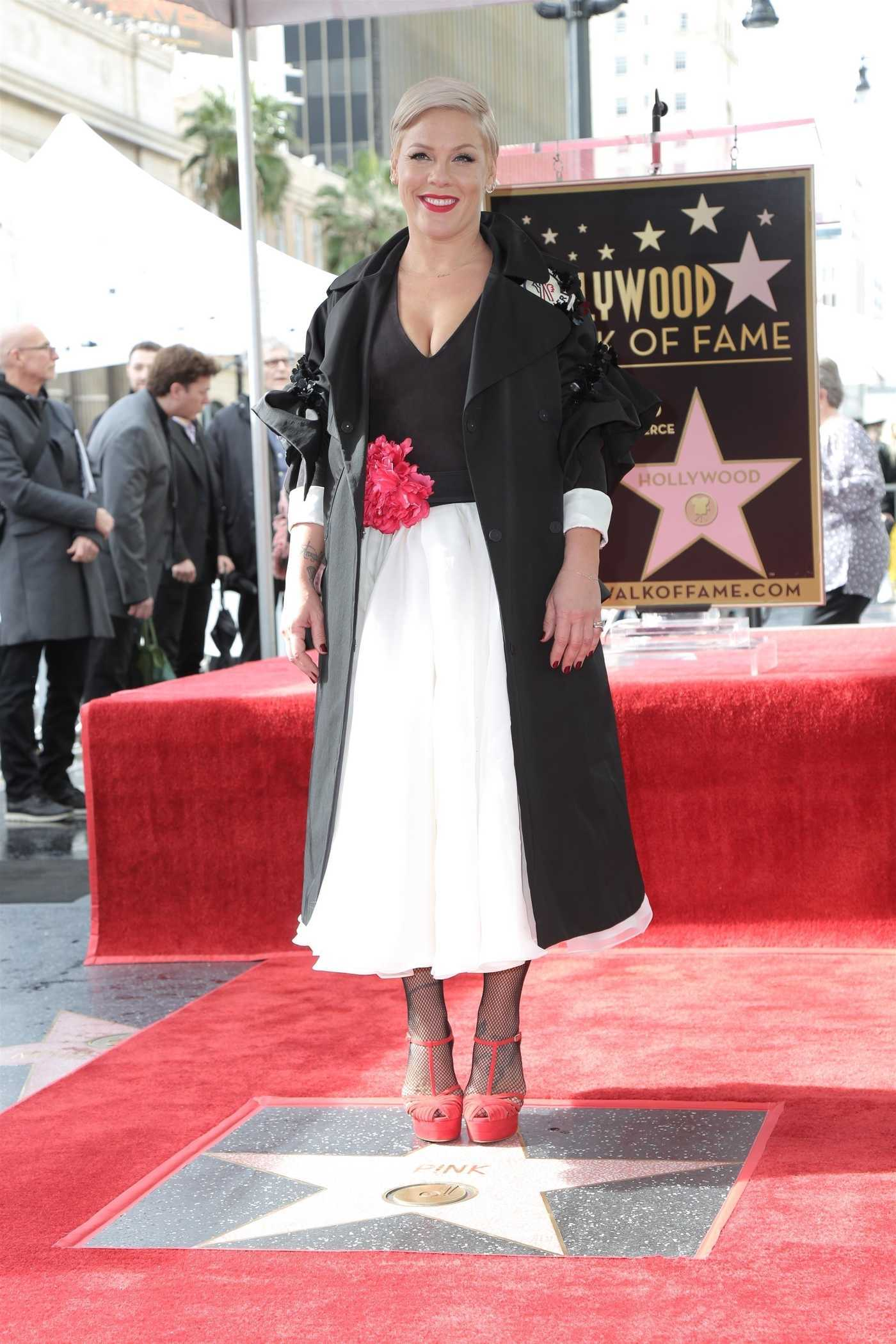 Pink Gets Her Star on The Hollywood Walk of Fame 02/05/2019