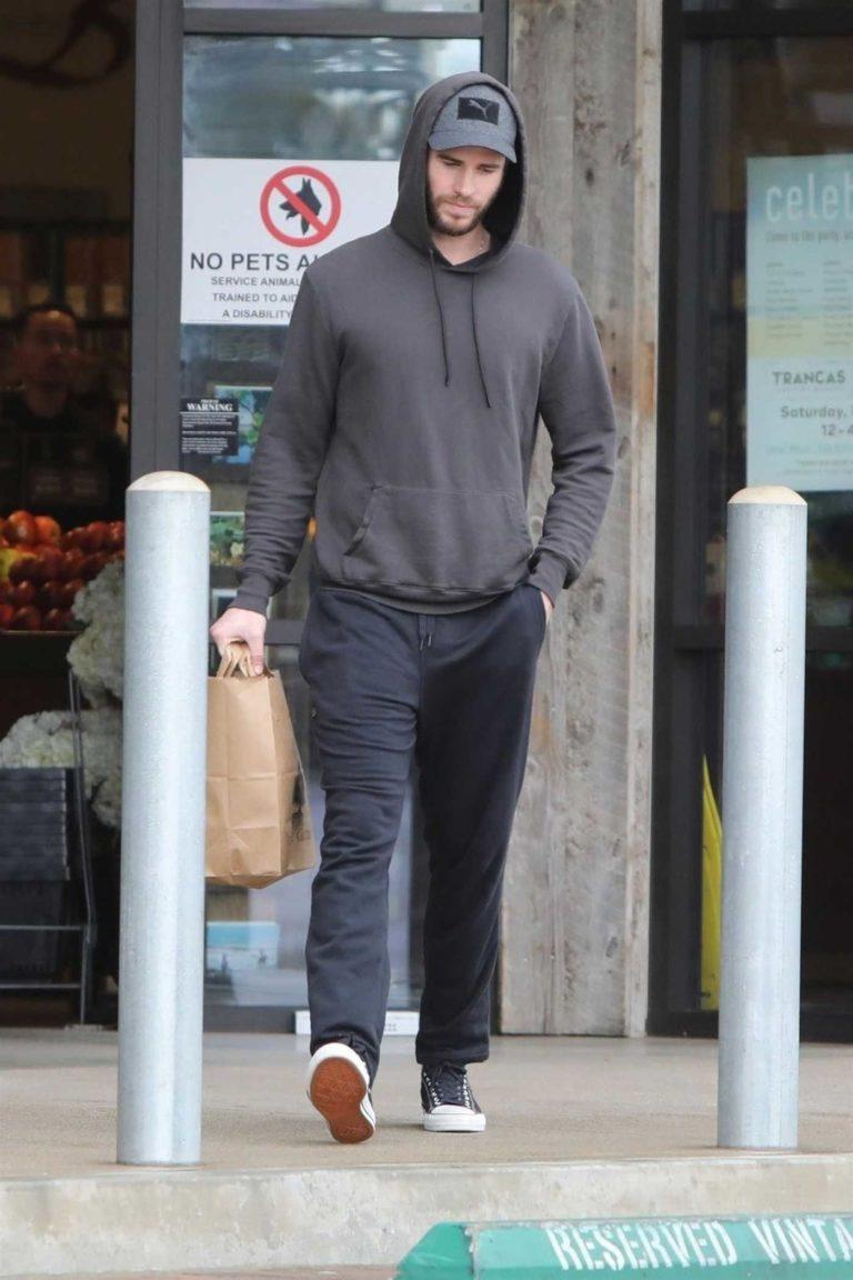 Liam Hemsworth in a Gray Hoody