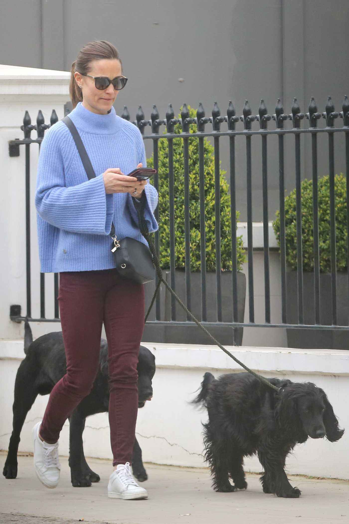 Pippa Middleton in a Blue Sweater Walks Her Dogs Out in London 03/29/2019