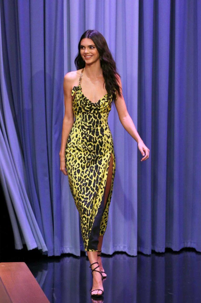 Kendall Jenner in a Leopard Print Dress