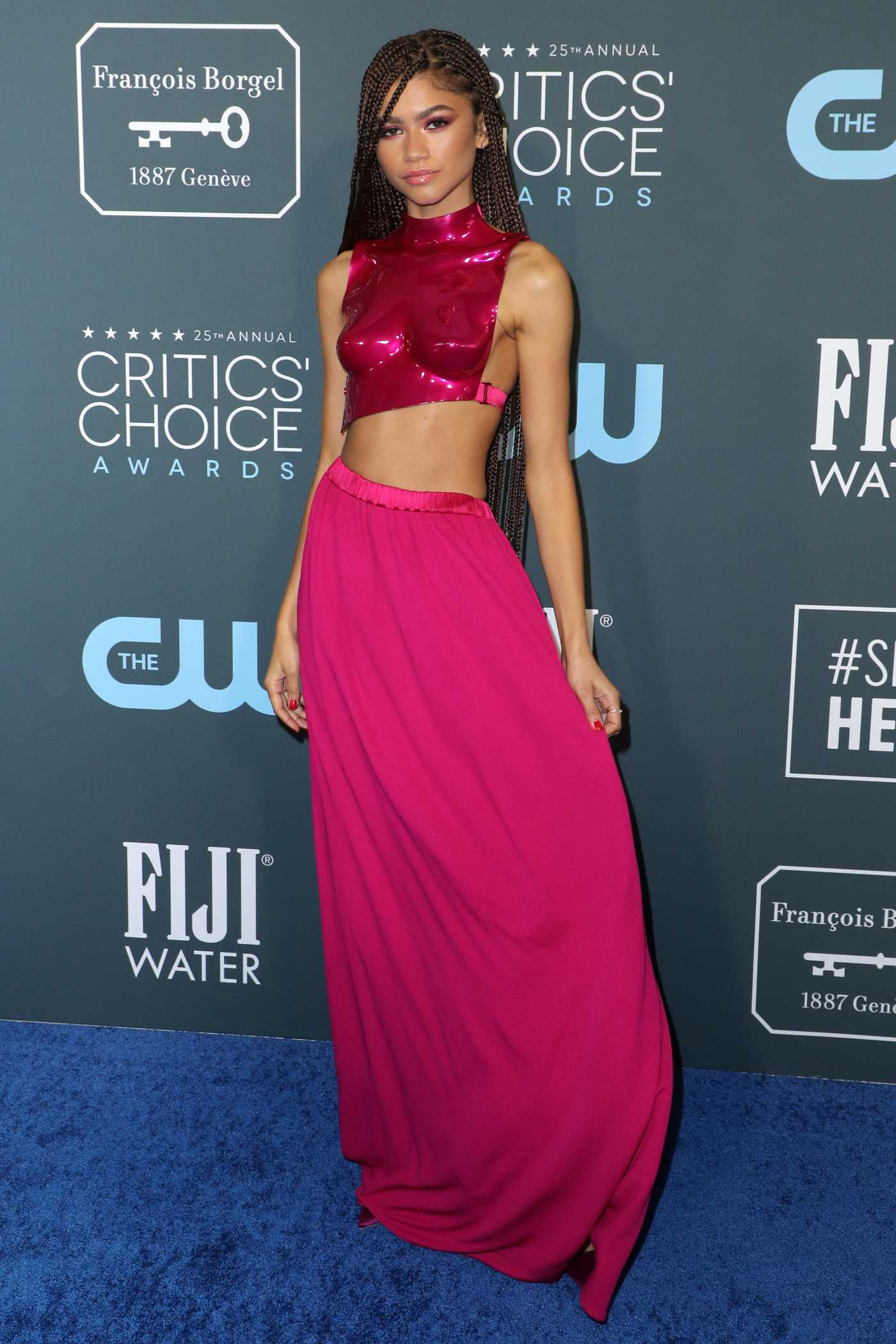 Zendaya Attends the 25th Annual Critics Choice Awards in Santa Monica 01/12/2020