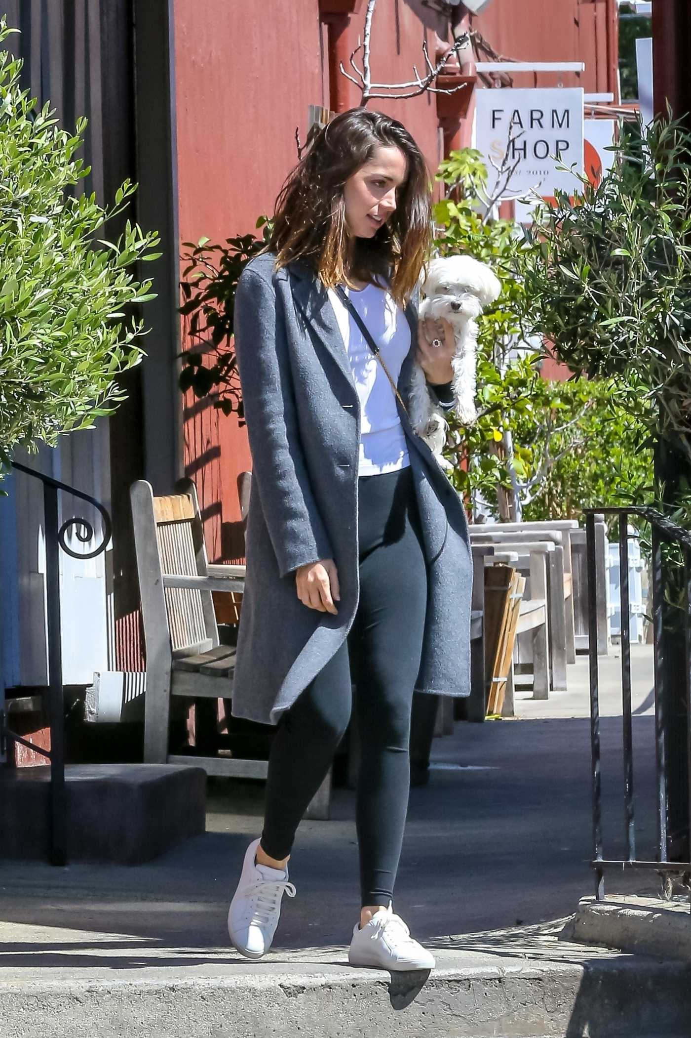 Ana De Armas in a Gray Coat Was Seen Out with Ben Affleck in Los Angeles 03/18/2020