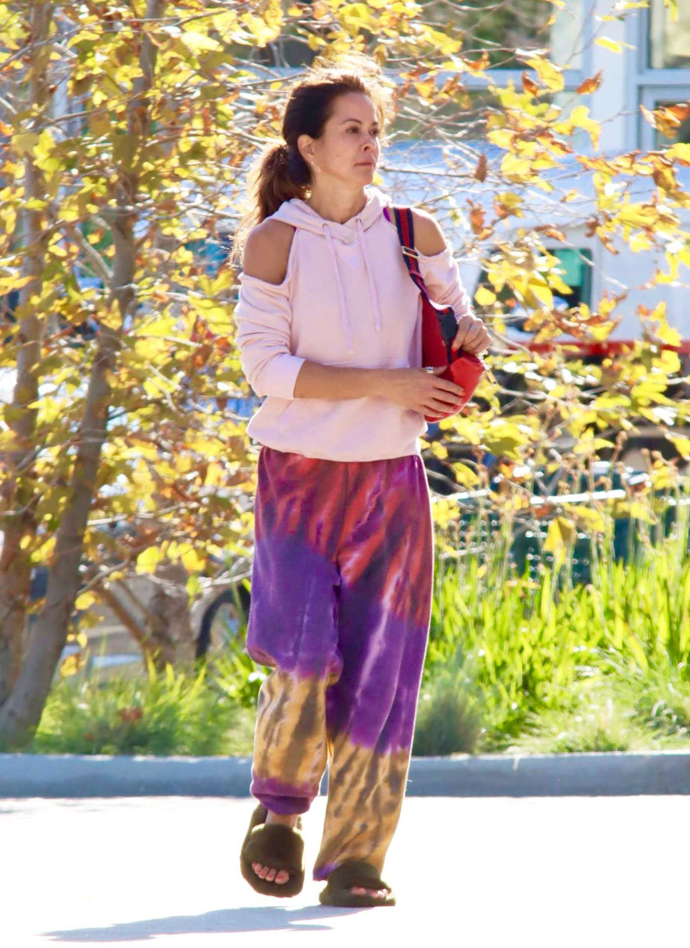 Brooke Burke in a Pink Hoody Gets Flowers and Groceries in Malibu 03/23/2020