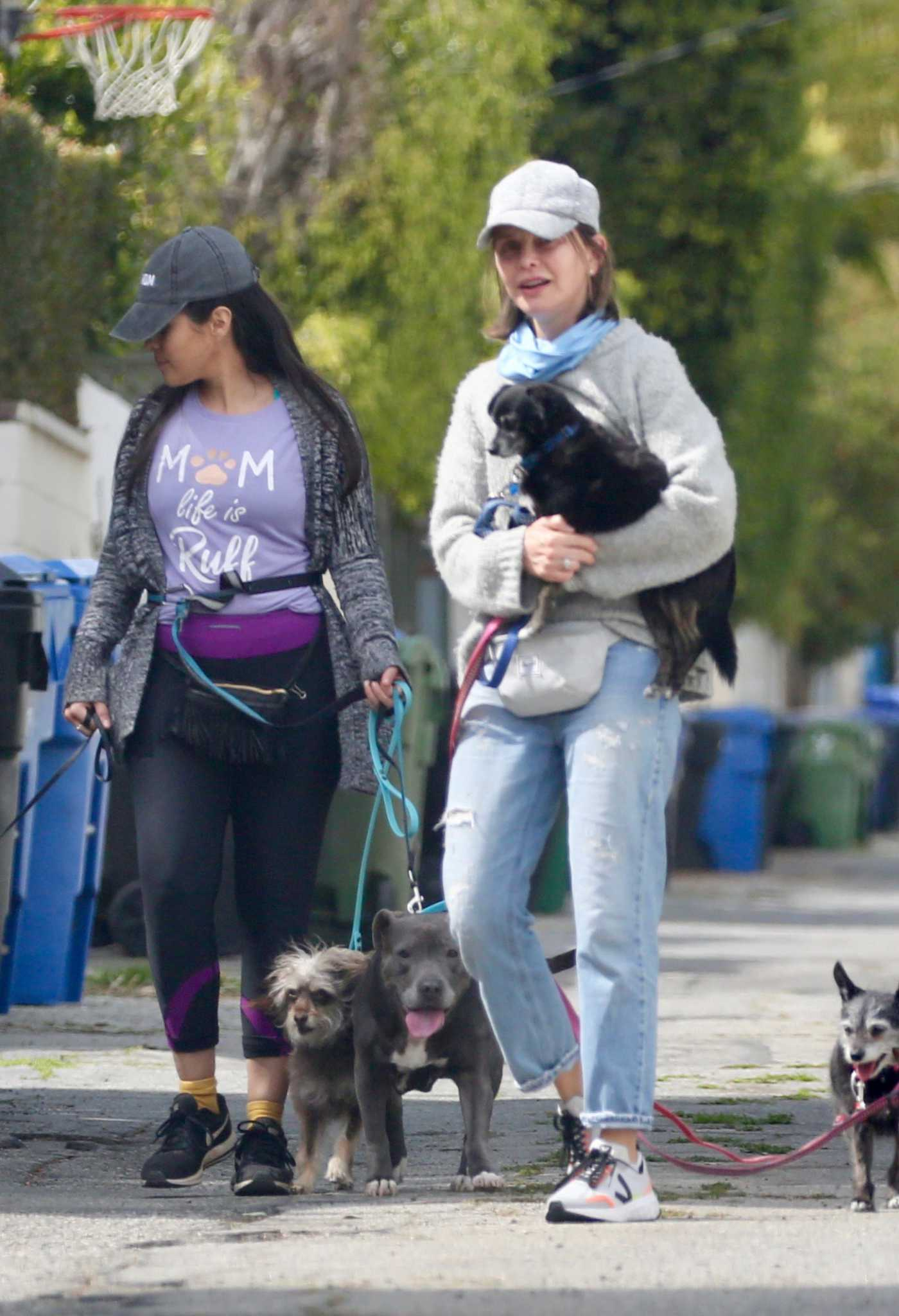 Calista Flockhart in a Gray Cap Walks Her Dogs in Los Angeles 04/03/2020