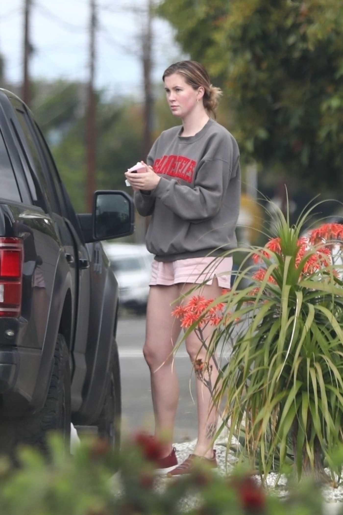 Ireland Baldwin in a Gray Sweatshirt Leaves a Dog Park in Los Angeles 04/12/2020