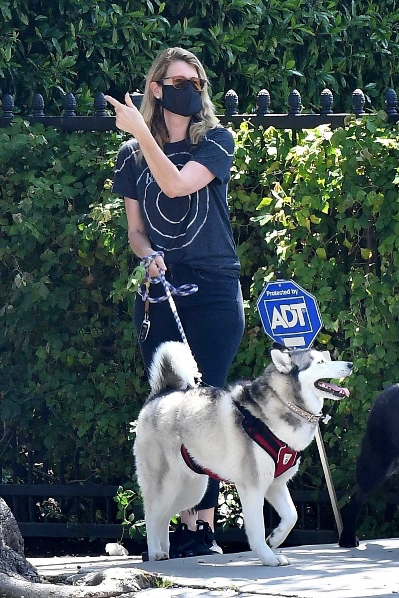 Laura Dern in a Black Face Mask Walks Her Dog Near Her Home in Santa Monica 04/28/2020