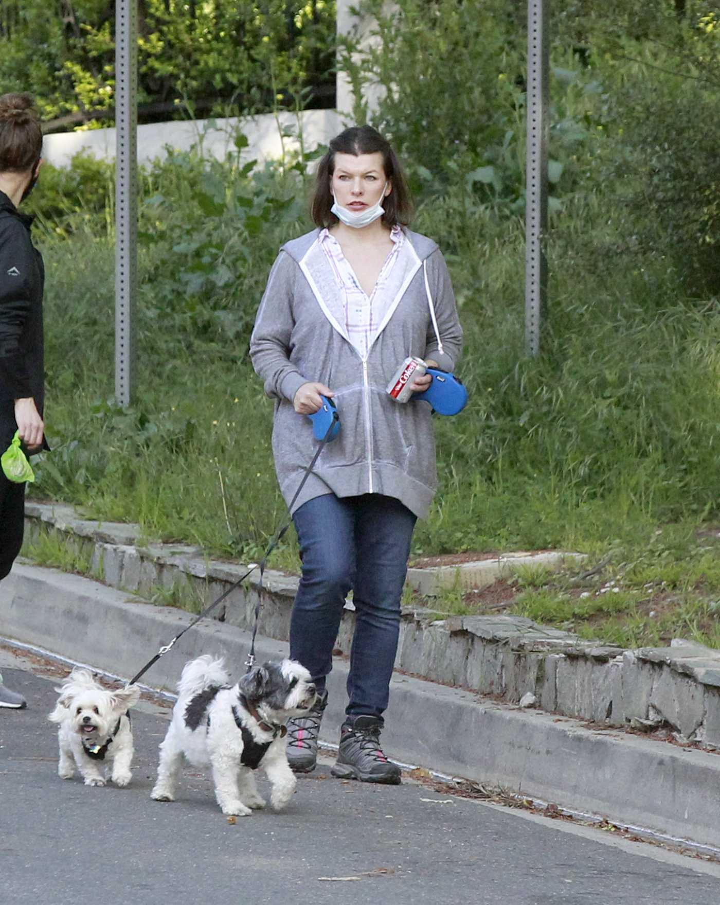 Milla Jovovich in a Gray Hoody Walks Her Dogs in Los Angeles 04/24/2020