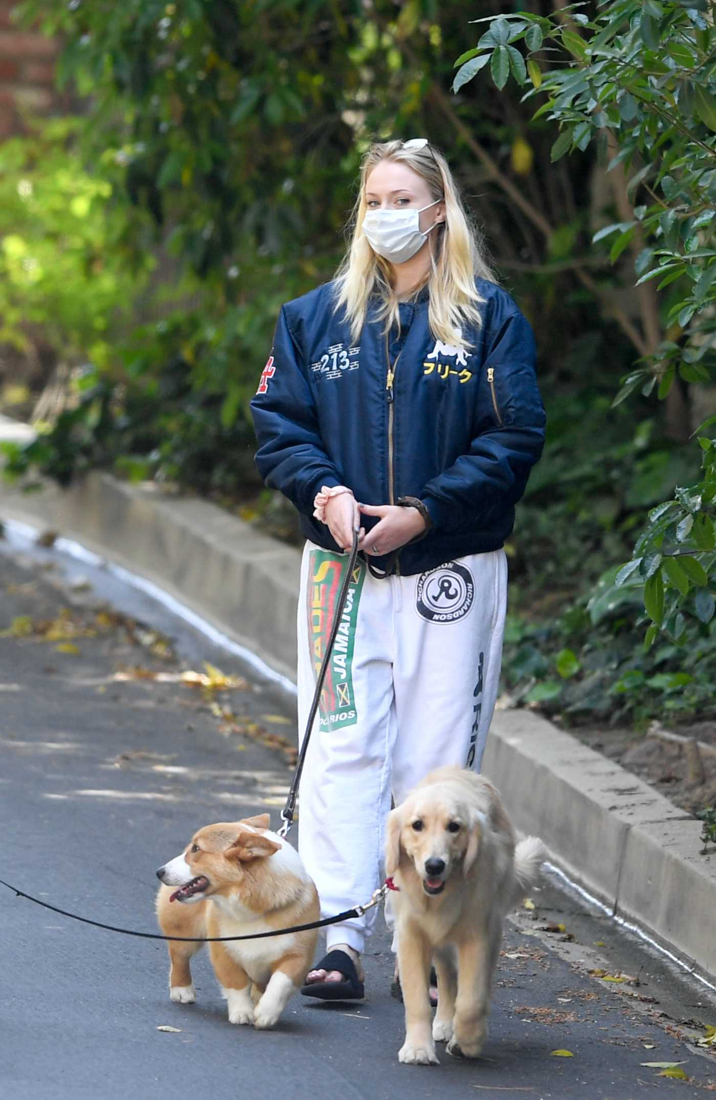 Sophie Turner in a Face Mask Walks Her Dog Out with Joe Jonas in Los Angeles 04/17/2020
