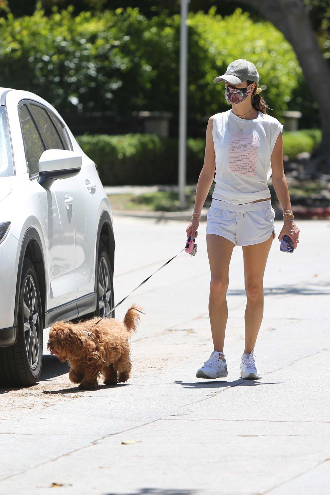 Alessandra Ambrosio in a Gray Cap Walks Her Dog Out in Brentwood 05/14/2020