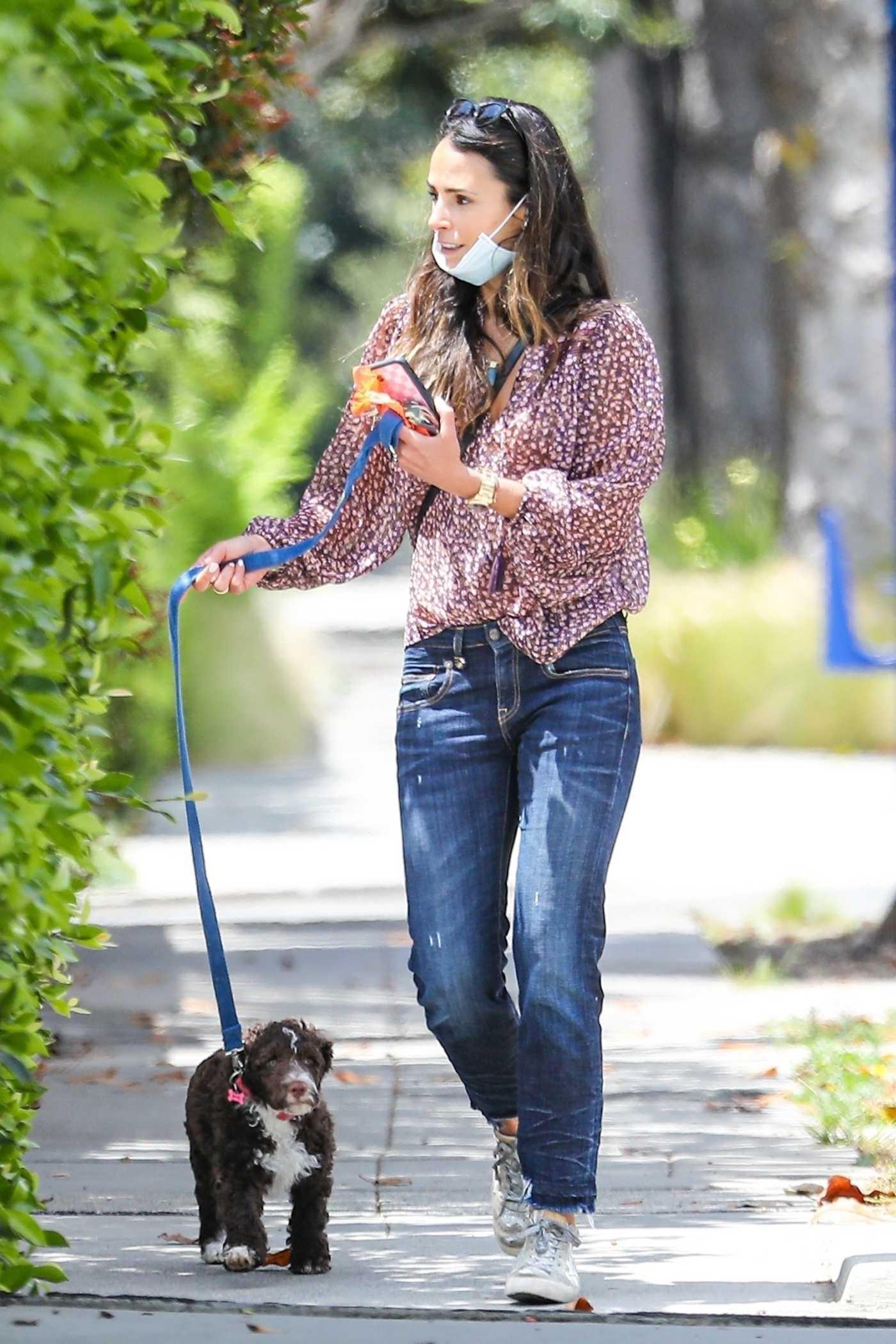 Jordana Brewster in a Protective Mask Walks Her Dog in Santa Monica 05/12/2020