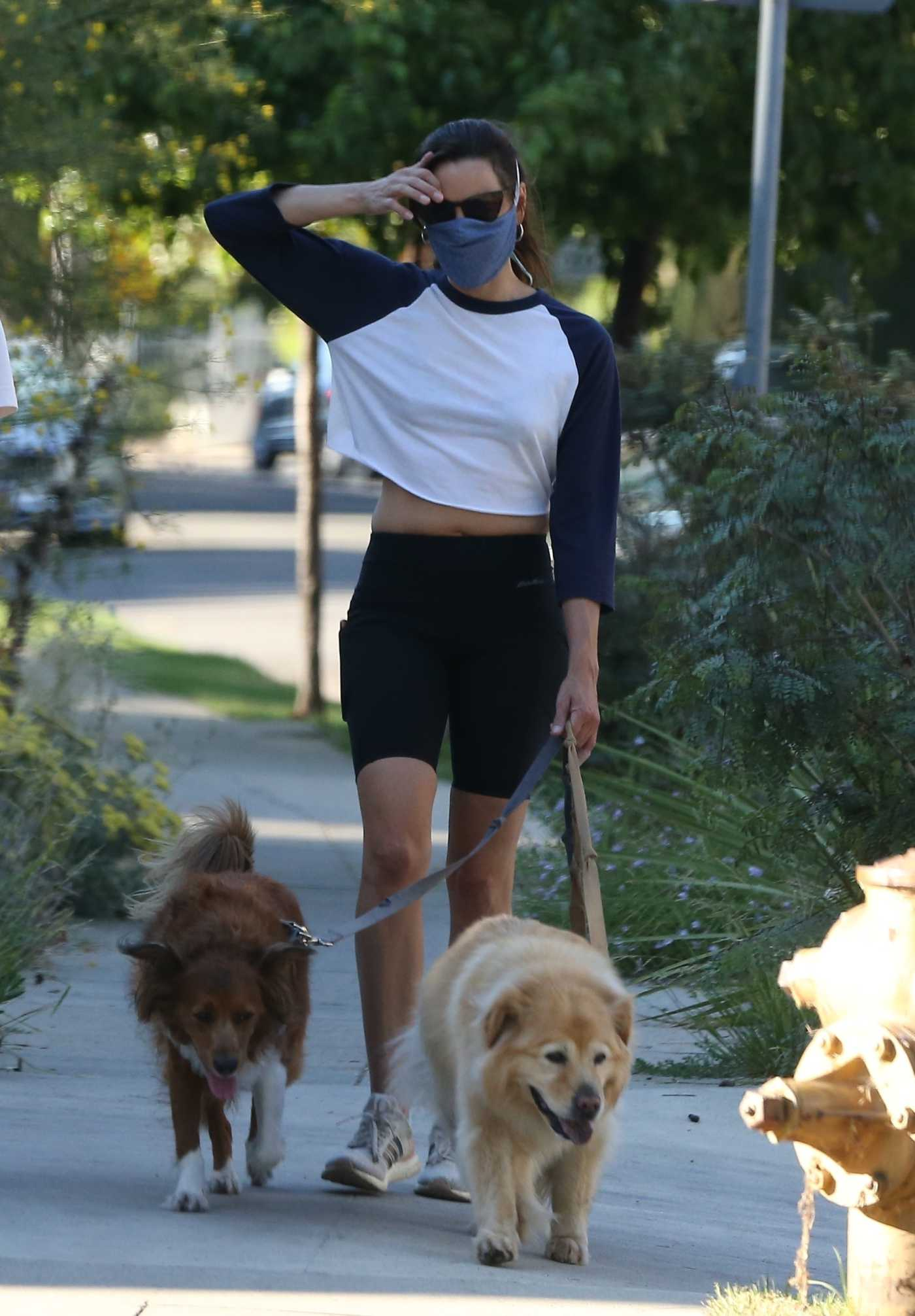 Aubrey Plaza in a Protective Mask Walks Her Dogs in Los Feliz 06/11/2020