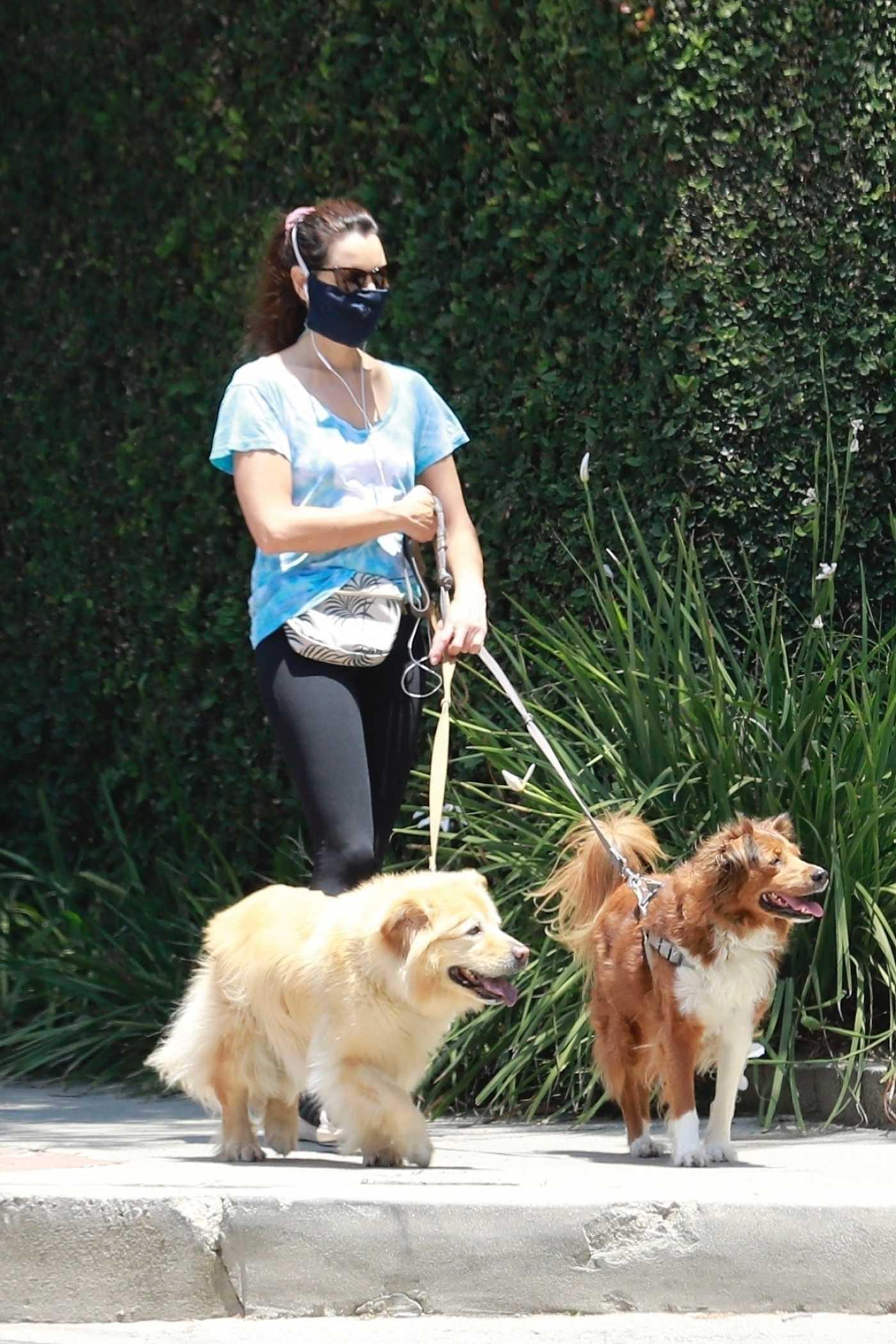 Aubrey Plaza in a Protective Mask Walks Her Dogs in Los Feliz 06/27/2020