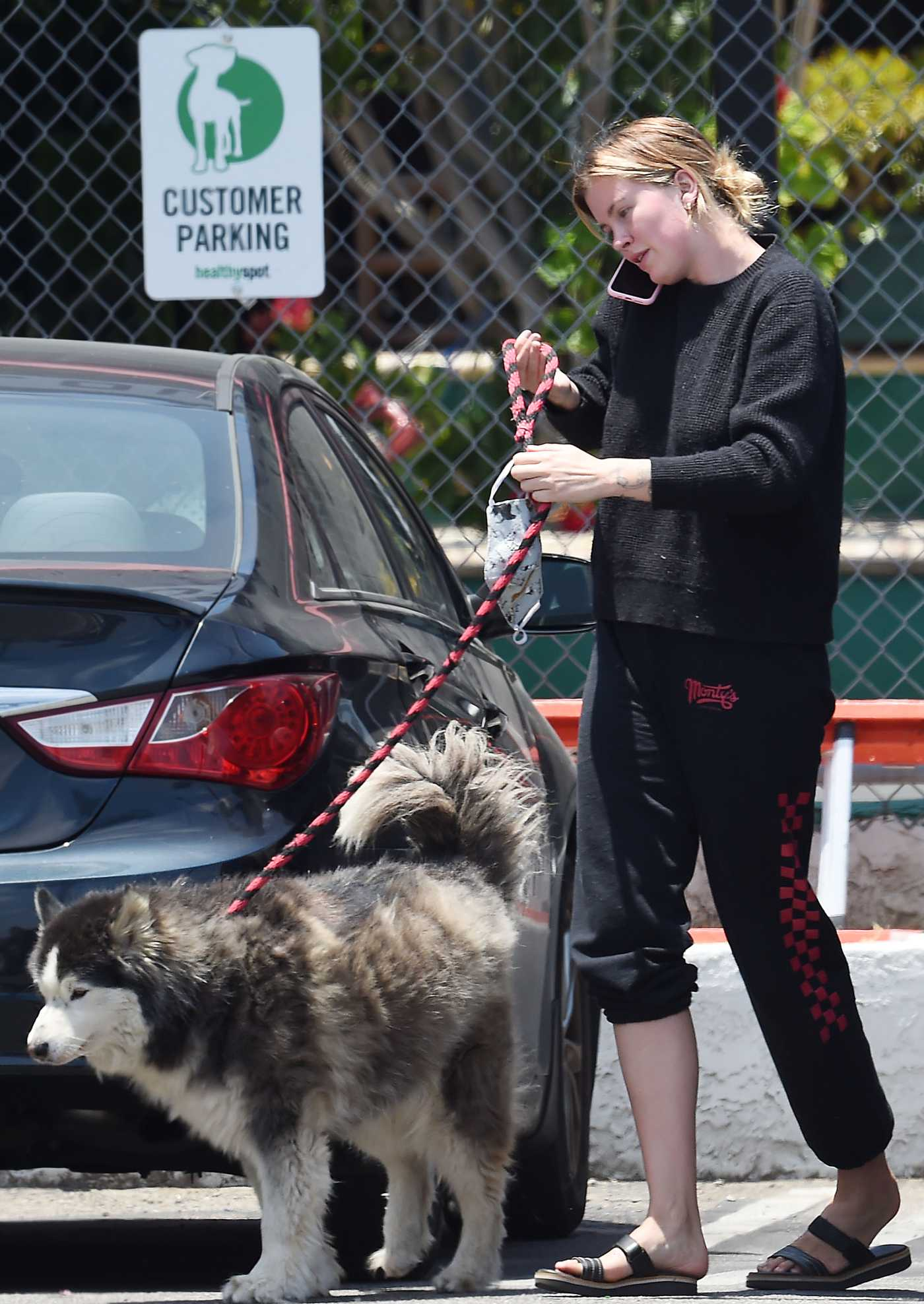 Ireland Baldwin in a Black Flip-Flops Was Seen Out with Her Dog Koda in Los Angeles 06/16/2020