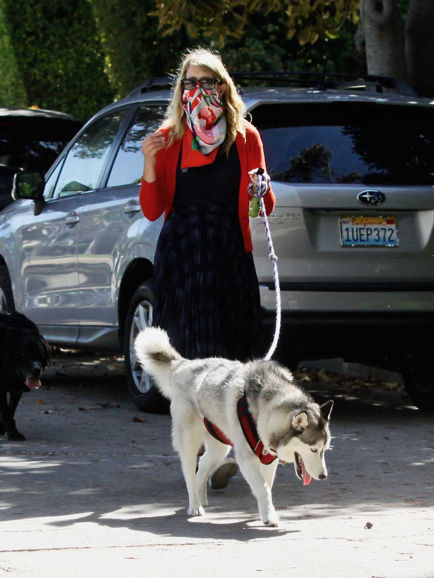 Laura Dern in a Bandana as a Face Mask Walks Her Dogs Out with Her Son Ellery Harper in Santa Monica 06/07/2020