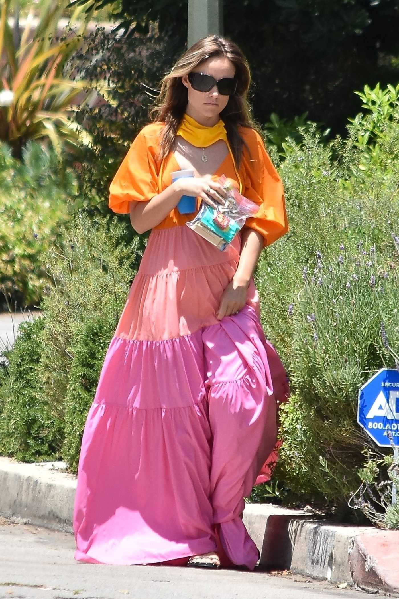 Olivia Wilde in a Rainbow Dress Was Seen Out in Los Angeles 05/31/2020