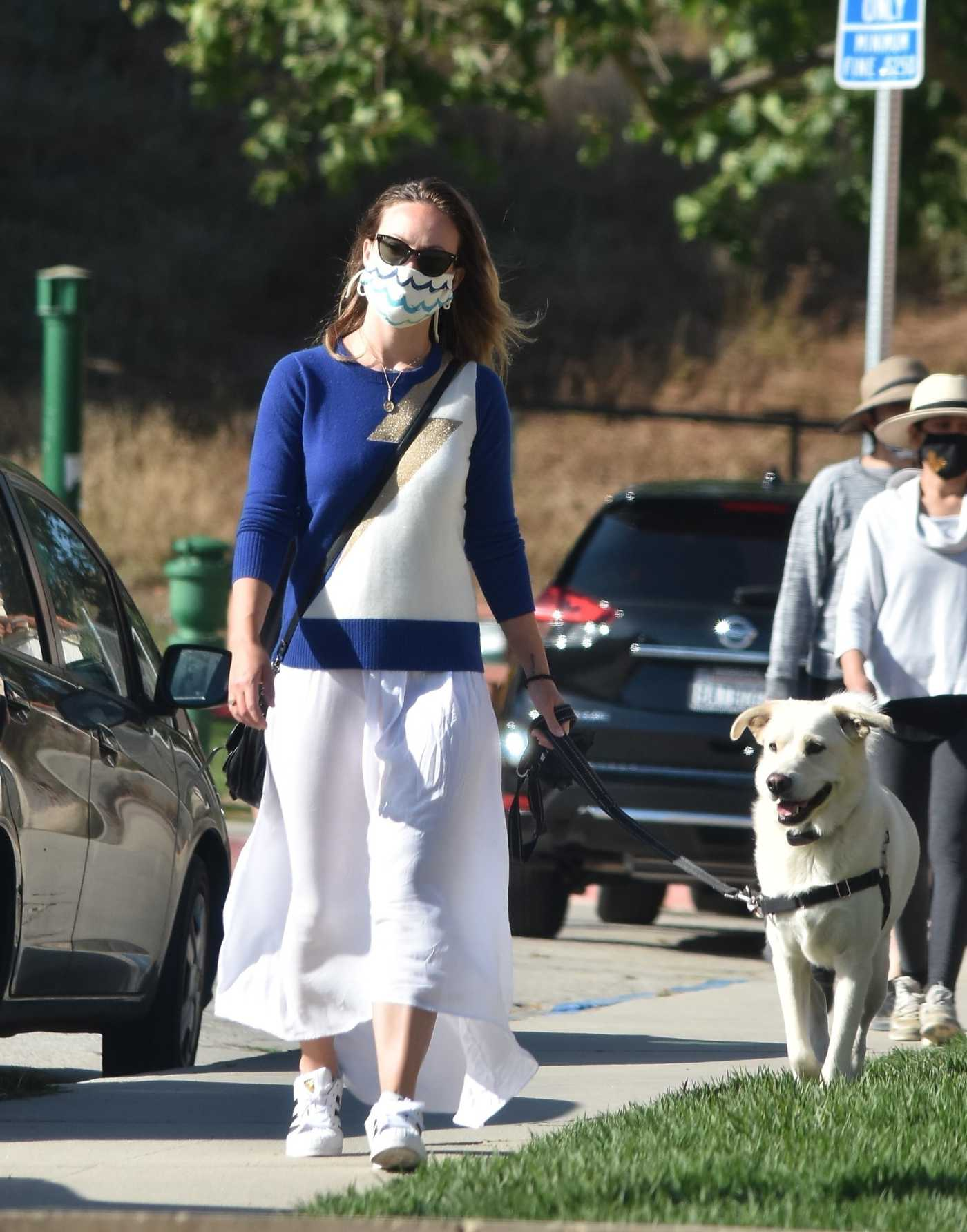 Olivia Wilde in a White Skirt Walks Her Dog in Los Angeles 06/07/2020