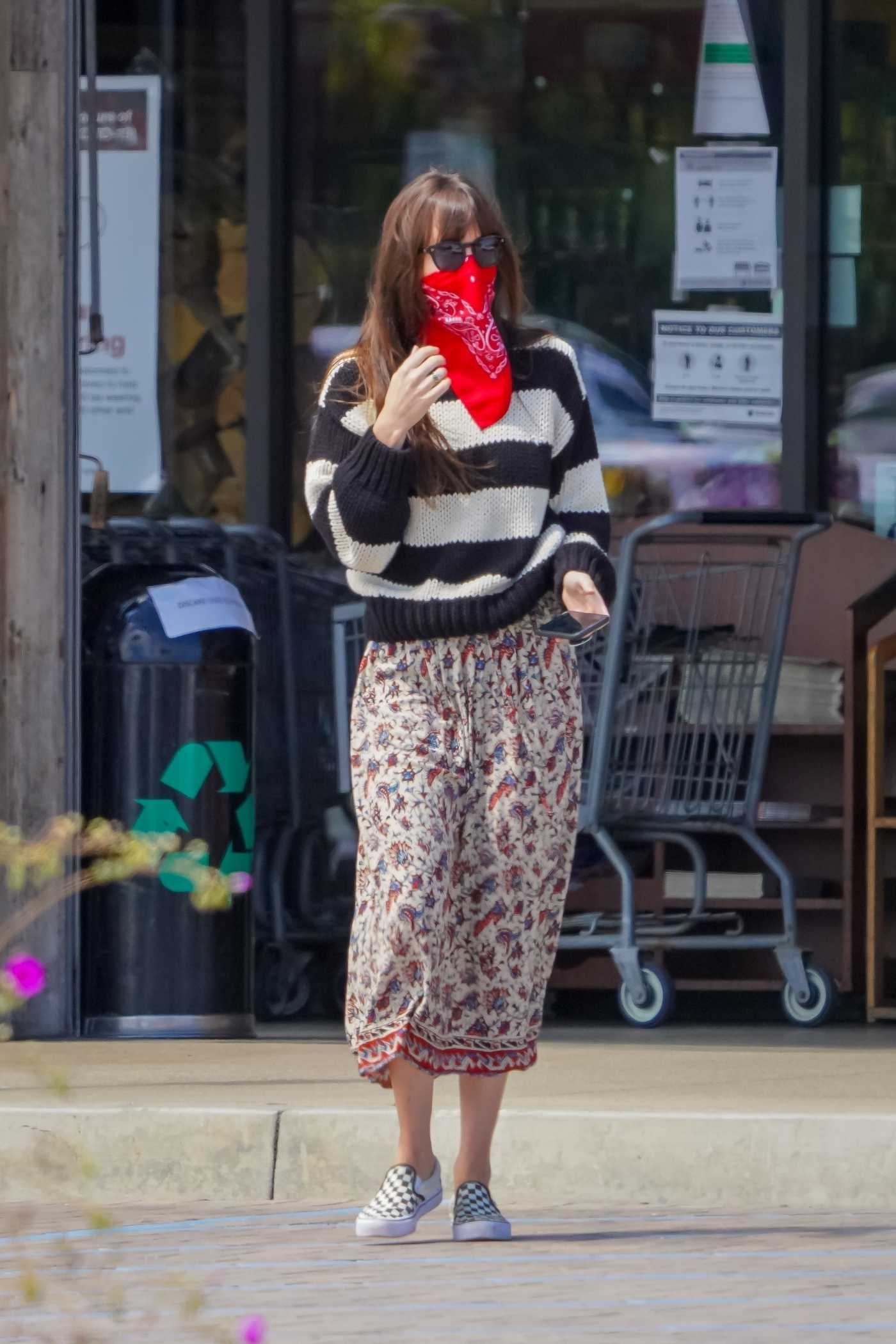 Dakota Johnson in a Striped Sweater Goes  Grocery Shopping in Malibu 06/28/2020