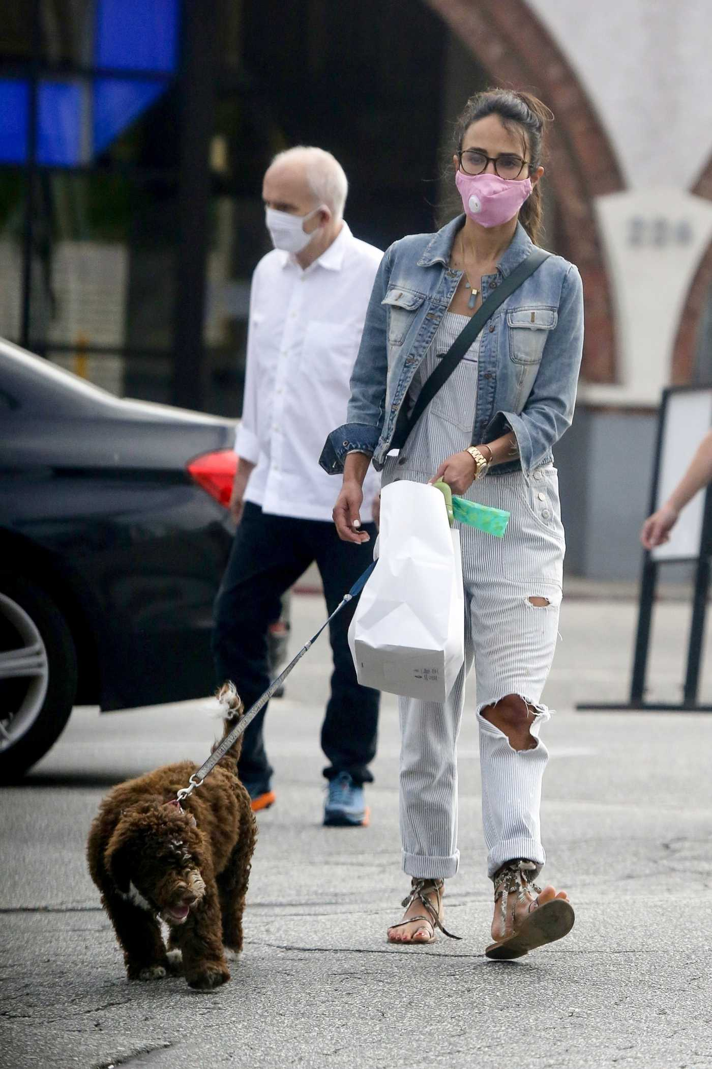Jordana Brewster in a Pink Protective Mask Walks Her Puppy in Brentwood 06/30/2020