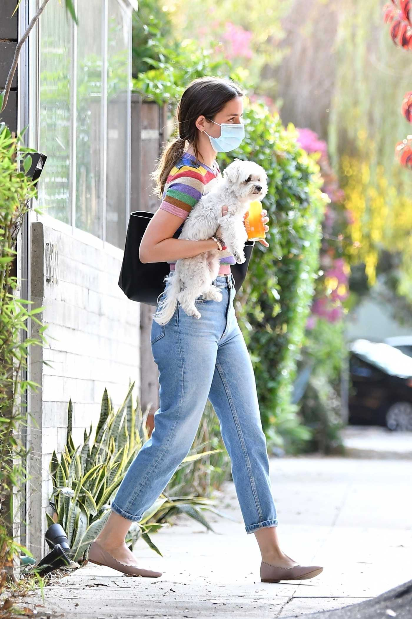 Ana de Armas in a Blue Jeans Was Seen Out with Her Dog in Venice Beach 08/19/2020