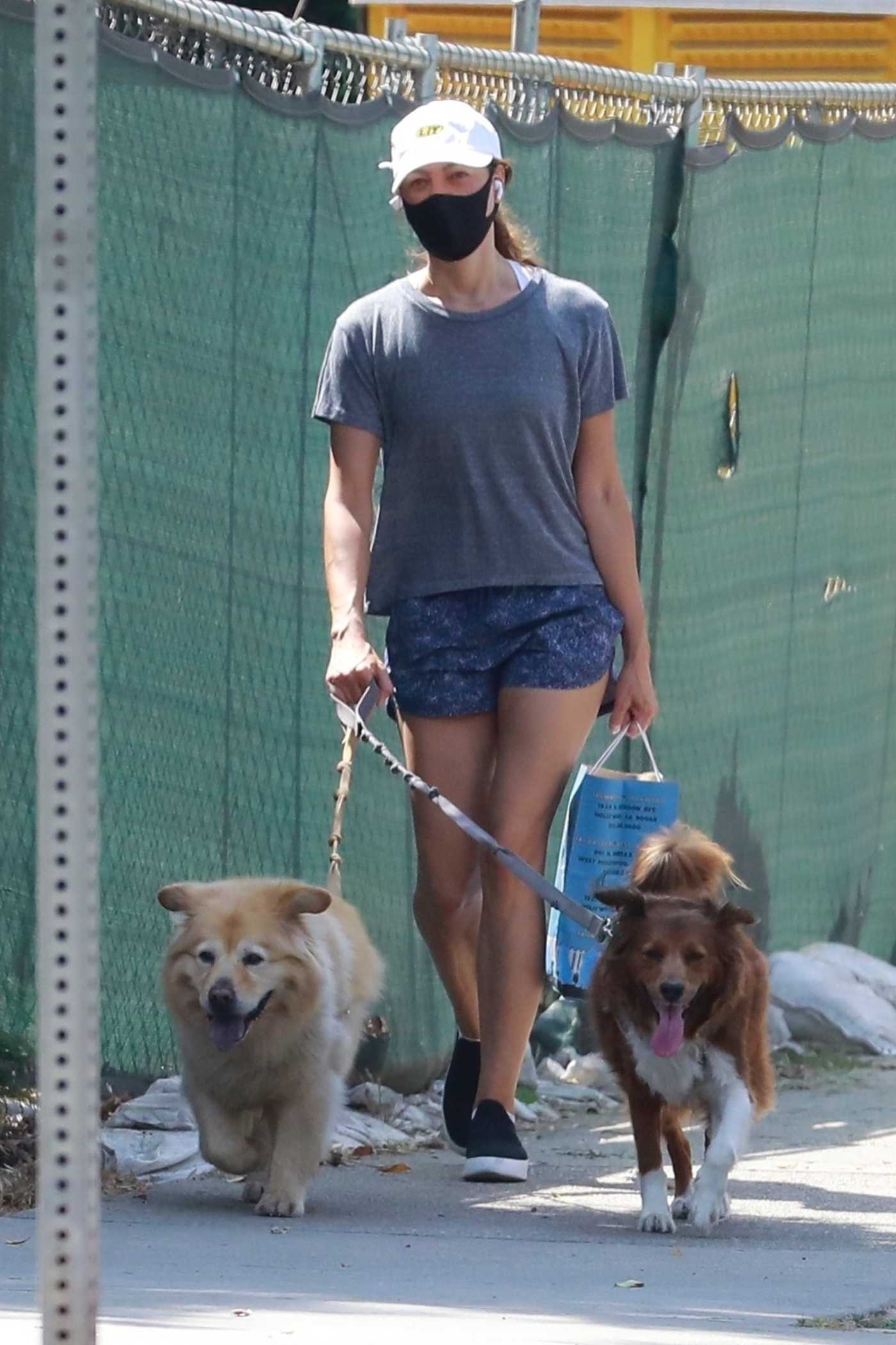 Aubrey Plaza in a Black Protective Mask Walks Her Dogs in Los Feliz 08/15/2020