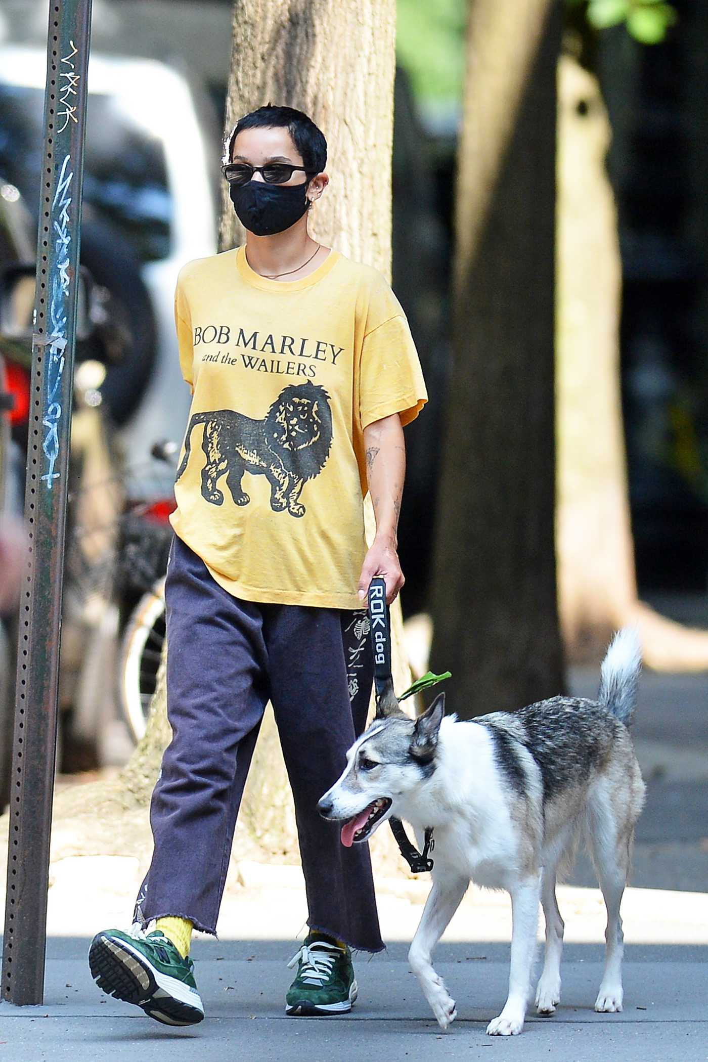 Zoe Kravitz in a Yellow Tee Walks Her Dog in New York 08/10/2020