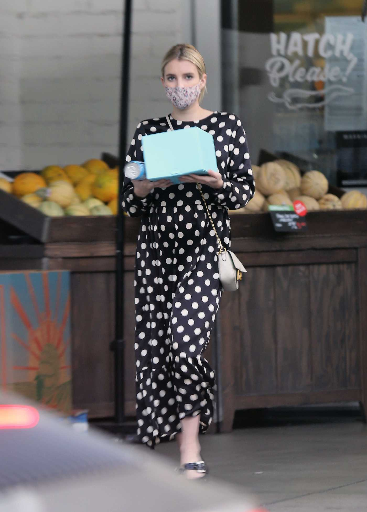 Emma Roberts in a Polka Dot Dress Goes Shopping in Los Angeles 09/08/2020