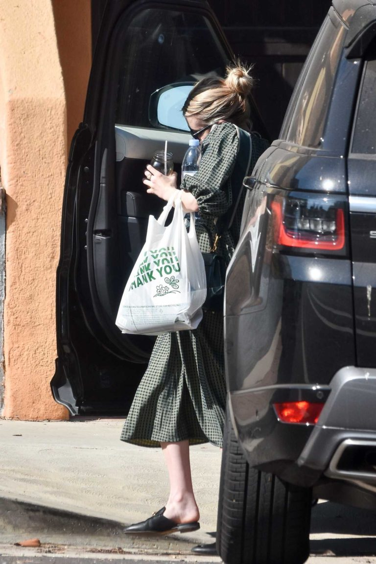 Emma Roberts in a Grey Gingham Dress