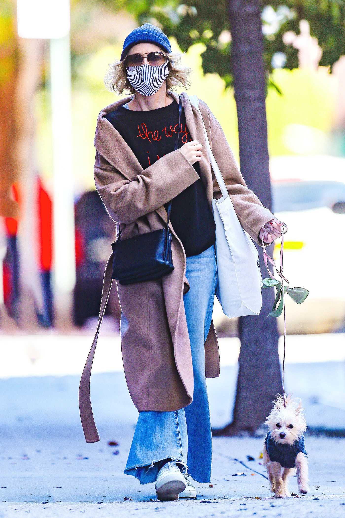 Naomi Watts in a Blue Knit Hat Walks Her Dog in New York 10/18/2020