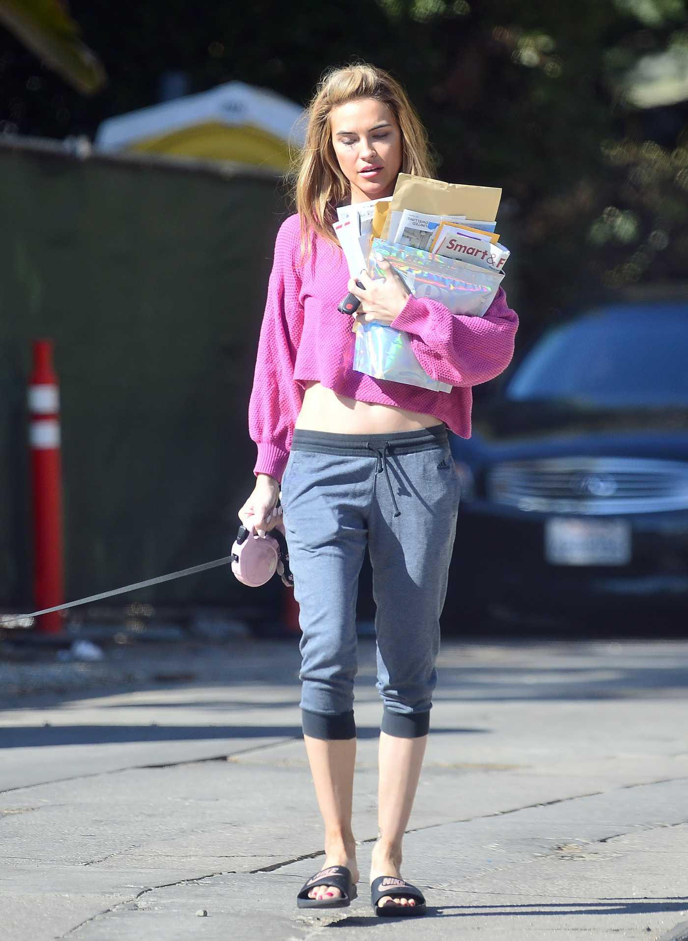 Chrishell Stause in a Midriff Bearing Crop Top Walks Her Dog in Los Angeles 11/13/2020