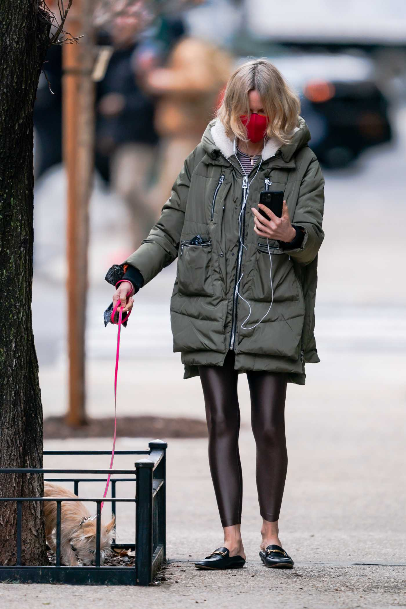 Naomi Watts in an Olive Jacket Walks Her Dog in New York 01/16/2021