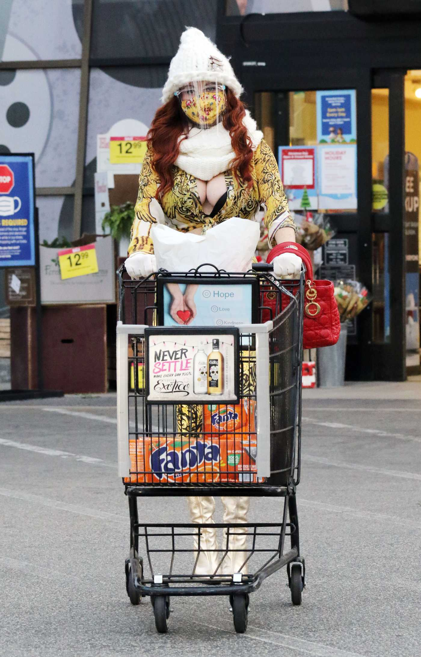 Phoebe Price in a White Knit Hat Goes Shopping at Ralph's in Los Angeles 01/01/2021