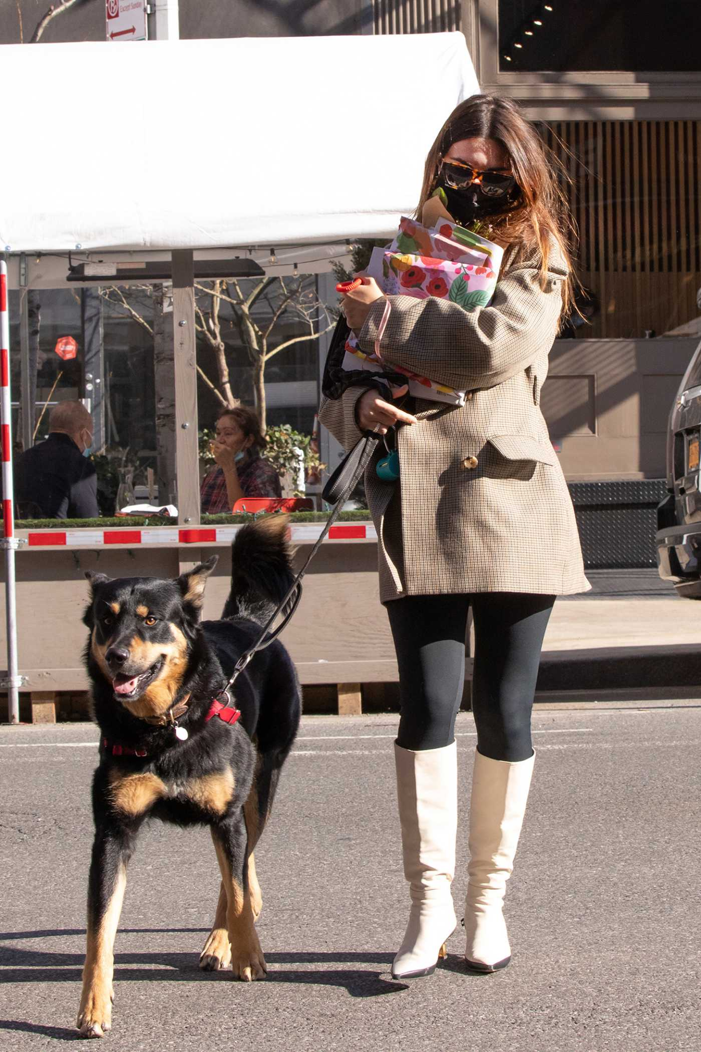 Emily Ratajkowski in a Protective Mask Walks Her Dog in New York 03/03/2021