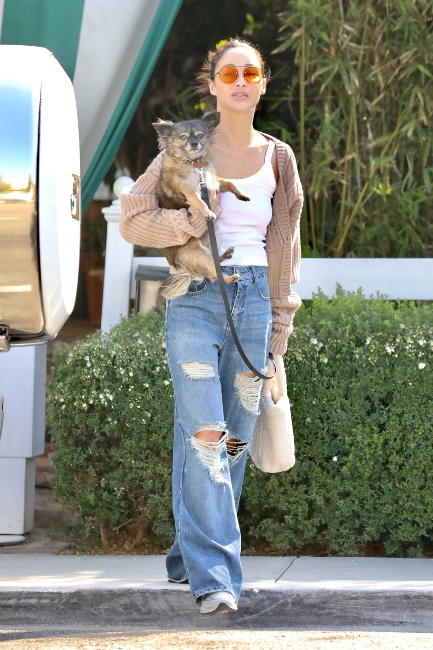 Cara Santana in a Blue Ripped Jeans Carries Her Dog in Los Angeles 06/23/2021