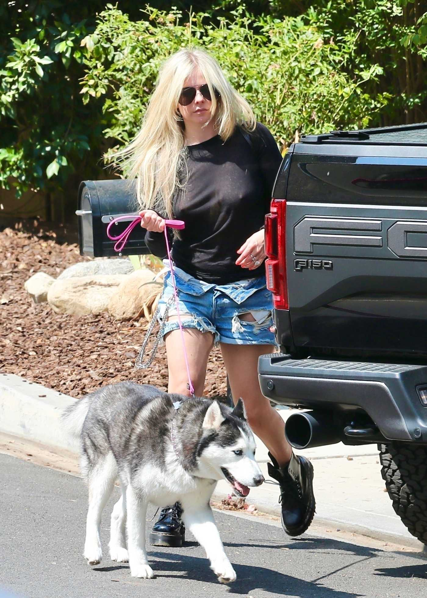 Avril Lavigne in a Blue Ripped Shorts Walks Her Dog in Calabasas 07/14/2021