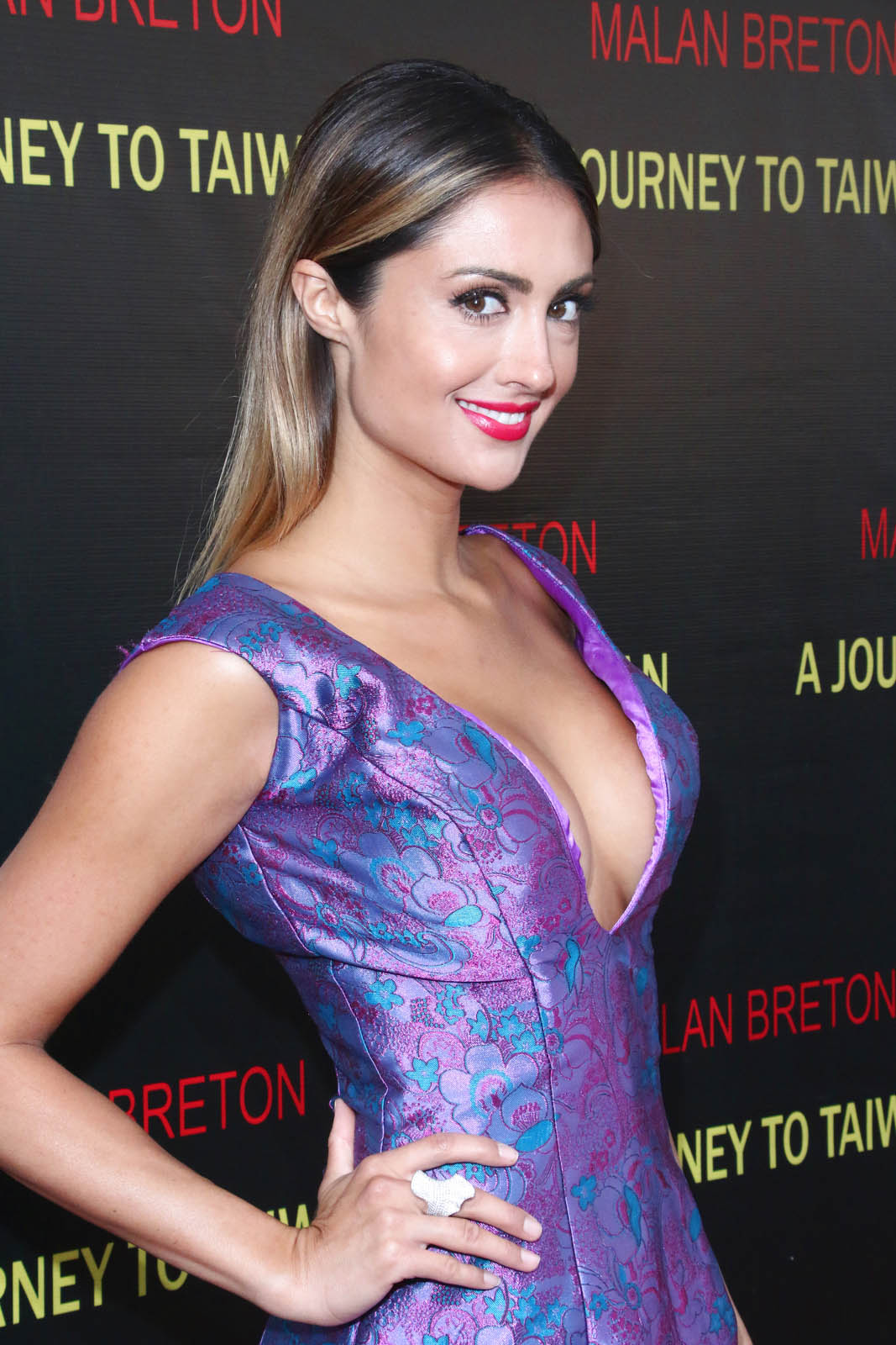 Katie Cleary A Journey to Taiwan Premiere in Los Angeles